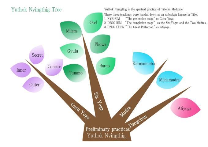 yuthok-tree